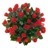 35 Róż czerwonych