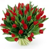 Create Your Own Floral Bouquet Of Tulips